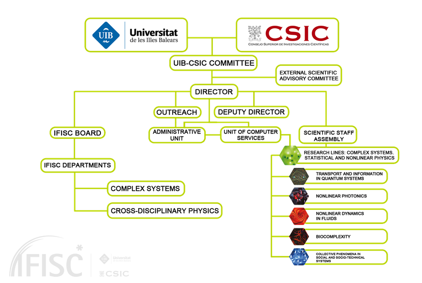 Organization IFISC